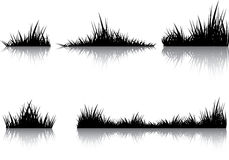 Black reflect. Silhouettes of grass with the reflection. Illustration conducted was used as the dummies for your composition Stock Photos