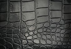 Black reptile leather texture with for background Stock Image