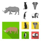 Black rhinoceros, panther wild cat, African animal elephant, imperial penguin. Wild animals set collection icons in. Monochrome,flat style vector symbol stock Stock Photography