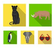 Black rhinoceros, panther wild cat, African animal elephant, imperial penguin. Wild animals set collection icons in flat. Style vector symbol stock illustration Stock Photography
