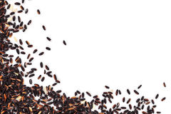 Black rice background with copy space. Stock Images