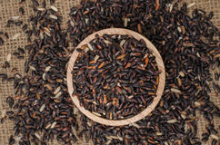 The black rice in the bowl on the sack bag Royalty Free Stock Photo