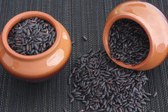 Black rice in the clay pots Royalty Free Stock Image