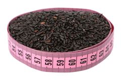 Black rice and meter Stock Images