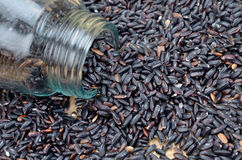 Black rice on table stock images