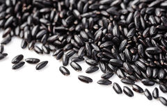 Black rice Royalty Free Stock Photo