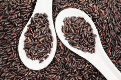 Black rice in white spoons Royalty Free Stock Photography