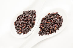 Black rice in white spoons Stock Photos