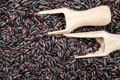 Black rice in wooden spoons. Black ricetexture with wooden spoons royalty free stock images