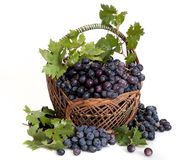 Black ripe grape in basket Royalty Free Stock Image