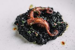Black risotto with cuttlefish ink and octopus tentacles on irregular shape plate. On dark wood background Royalty Free Stock Photo