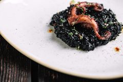 Black risotto with cuttlefish ink and octopus tentacles on irregular shape plate. On dark wood background Royalty Free Stock Photos