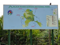 Black River Gorges. National Park, Mauritius Island Stock Photography