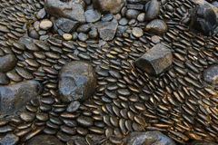 Black river stones in different shapes background and texture Stock Photos