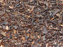 Black Rize Tea. Layer of dry black rize tea, which is commonly used for making typical Turkisch tea royalty free stock photography