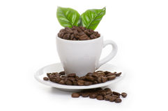 Black roasted arabica coffee beans. And cup full of coffee Stock Image