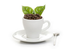 Black roasted arabica coffee beans. And cup full of coffee Stock Photography
