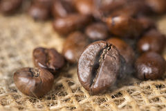 Black roasted arabica coffee beans with smoke effect Stock Image