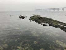 Black Rock-Riff der Dalian-Seeüberquerungs-Brücke lizenzfreies stockfoto