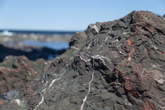 Black Rock with White and Red Veins Stock Photography