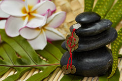 Black rocks with feng shui chinese coins Royalty Free Stock Photo