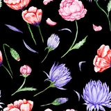 Black Romas Floral Pattern Royalty Free Stock Photography