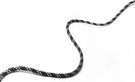 Black rope. Stock Images