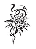 Black rose stock illustration