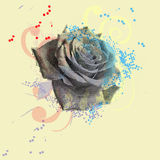 Black Rose Royalty Free Stock Photo