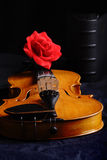 Black and rose. Musical background � instruments. Shot in studio Stock Photo