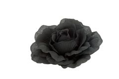 Black rose. Isolated fabric black rose Royalty Free Stock Images