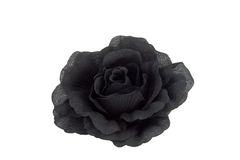 Black rose. Isolated fabric black rose Stock Photo