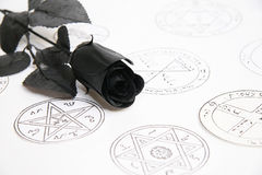 Black rose. Black magic rose on a white pentagram background, sword, medieval occult signs, stamps Stock Photo