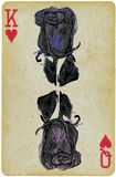 Black rose, on a playing card - an hand drawn vector. Line art technique, colored vector illustration