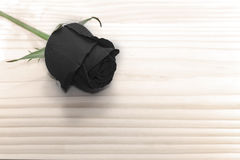 Black rose on wooden table, love concept for valentines. Day Stock Images