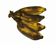 Black rotten banana Stock Image
