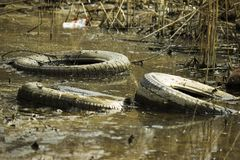 Black round discarded tires from under the car lie at the bottom of a green pond royalty free stock photography