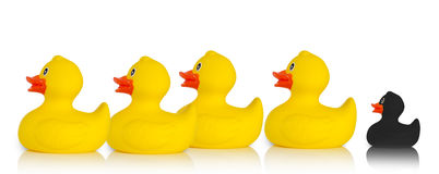 Black rubber duck excluded from the rest Stock Photo