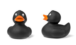 Black Rubber Duck Stock Photos
