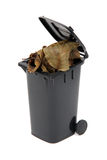 black rubbish bin with organic waste Stock Photography