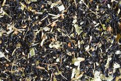 BLACK RUSSIAN HERBAL TEA 05 stock images