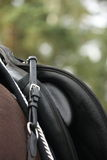 Black saddle on black horse Stock Photo