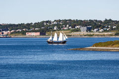 Black Sailboat with White Sails Stock Photography