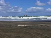 Black sand beach. Beautiful black sand Otaki beach, NZ royalty free stock photo