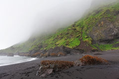 Black sand beach - Dyrholaey, South Iceland Stock Photo