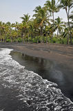 Black Sand Beach on the Island. A deserted black sand beach with tall palm trees Royalty Free Stock Image