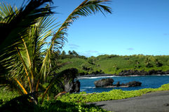 Black Sand Beach on Kauai. Black sand beach is framed by palm fronds.  Aqua blue water has black lava rocks in the middle.  Blue skies Stock Photo