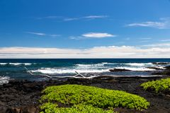 Black Sand beach on the Big Island of Hawaii; black volcanic rock and vegetation in foreground, blue ocean and waves in background stock image