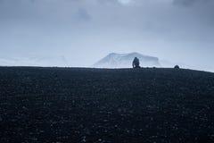 The black sand beach of Reynisfjara Stock Photography