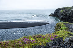 Black sand on the south coast of Iceland. Black volcanic sand on the south coast of Iceland Stock Photo